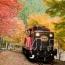 【京都府】嵯峨野トロッコ列車と嵐山嵯峨野散策 イメージ