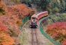 12/8(金)嵯峨野トロッコ列車と嵐山散策、残席4 イメージ