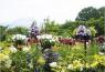 とっとり花回廊と由志園 イメージ
