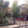 【バスの日】京都 のこもれびの『哲学の道』散策 イメージ