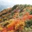 【香川県】小豆島 紅葉の寒霞渓 イメージ