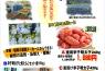 福岡県「さかえや」辛子明太子、通信販売はじめました。 イメージ